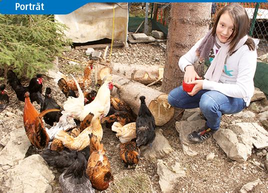 Letzte Chance für alte Hühnerrassen